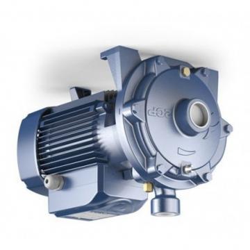 Vickers 25M55A-1C20-21-B-02-G Idraulico Pala Motore 4000 RPM 3.52 Cu.in 60 HP