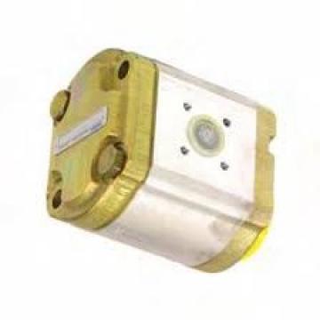 Nuovo LAMBORGHINI Mlsd / GP.205 Idraulico Cambio Pompa Mlsd / GA208C2 MLSDGP205