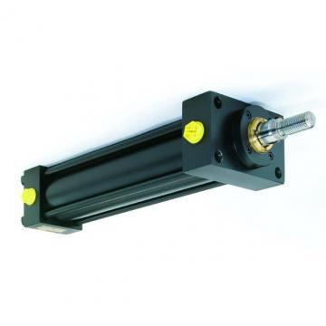 Cilindro Idraulico Doppia Azione 70/40 Div. Mod. Varianti Con E senza Fissaggio