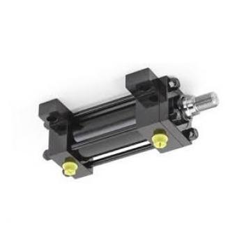 Cilindro Idraulico Doppia Azione 50/25 Div. Mod. Varianti Con E senza Fissaggio