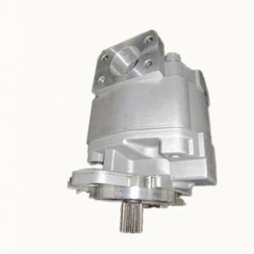 C7762 Pompa Idraulica Fiat Trattore M, L, Per Serie