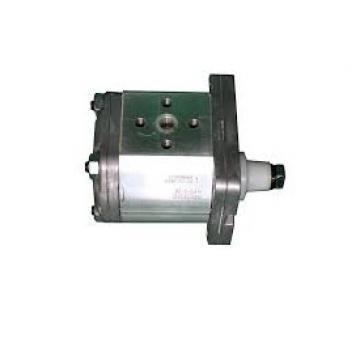 Deutz, Pompa Idraulica 19 Ccm Trattore, Vecchio OEM Nr 01176452