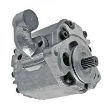 Pompa Idraulica Per Lamborghini R1156, 654, 683, 854, 955, (11 CM ³)