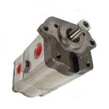 Pompa Idraulica Bosch 0510615353 per Lamborghini Lampo RF Rs Sprint