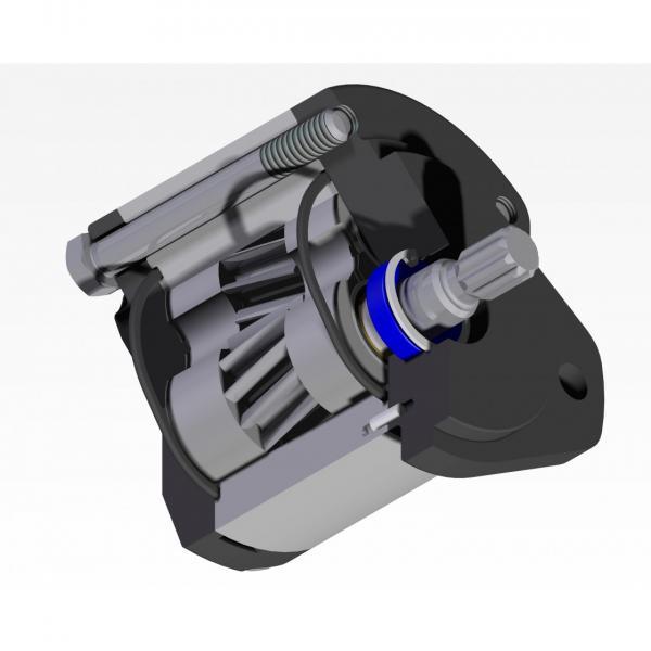 1076957M91 Pompa di sollevatore idraulico per i modelli di trattori Massey Ferguson 231