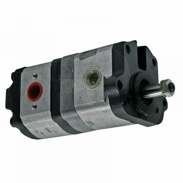 Pompa ad Ingranaggi Idraulica C31 Gruppo 2 per Trattore Cod. AMA 17009