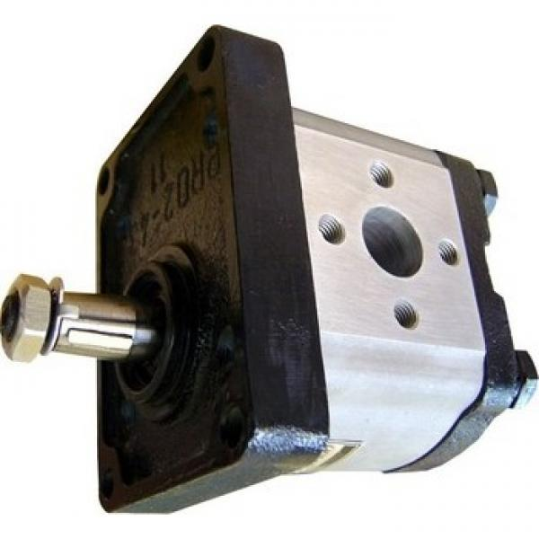 Pompa Idraulica Per Massey Ferguson 675 690 698 699 Trattori