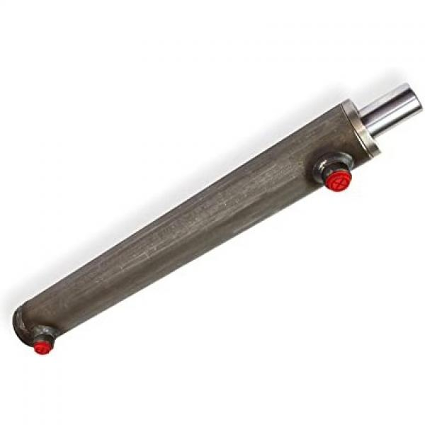 Flowfit Idraulico Doppio Agendo Standard Cilindro / RAM 40x25x500x705mm 1001/5