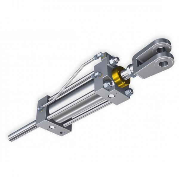 CILINDRO idraulico PISTONE doppio effetto 290x50x30mm corsa 150 OLEODINAMICO