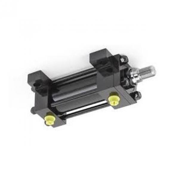 CILINDRO idraulico PISTONE doppio effetto OLEODINAMICO 390x50x30mm corsa 250