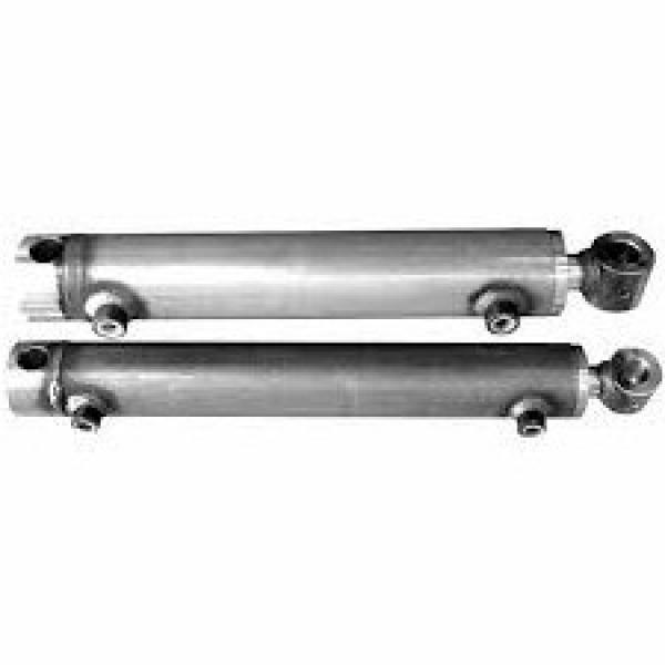 Flowfit Idraulico Doppio Agendo Standard Cilindro / RAM 50x25x150x370mm 1009/150