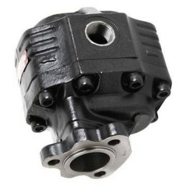 Pompa Idraulica Per Fiat F110 F115 F120 F130 F140 M100 M115 M135 M160 Trattori