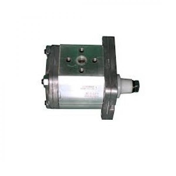 Pompa Idraulica Per Ford TW10 TW15 TW20 TW25 TW30 TW35 8630 8730 8830 Trattori