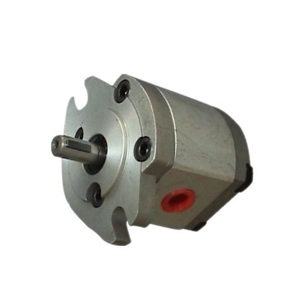 Spaccalegna verticale elettrico AMA RHINO con motore monofase - 8 tonnellate
