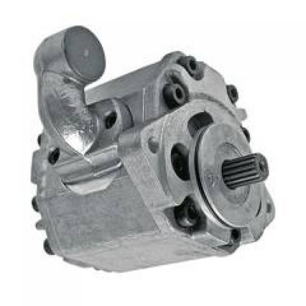 Pompa Idraulica per Lamborghini R 235, R 503,R 603, Einfachpumpe (8 cm ³)