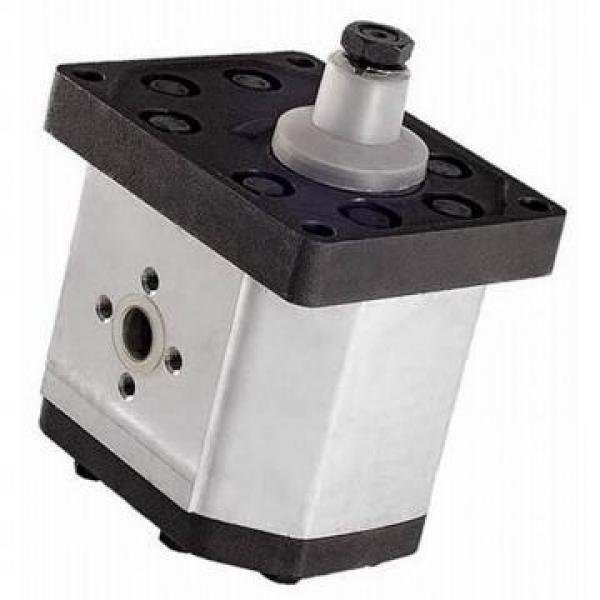Flowfit Idraulico Della Frizione & Pompa elettromagnetica 12V 14 daNm 25.5 L/MIN ZZ000445