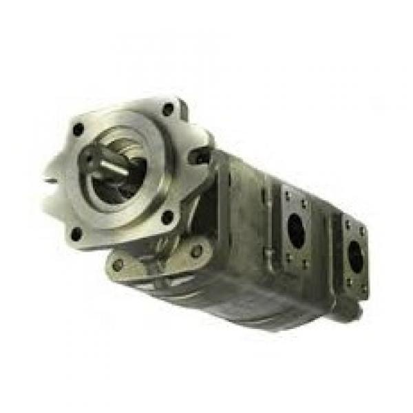 11 GPM Hydraulic Two Stage Hi-Low Gear Pump At 3600 Rpm