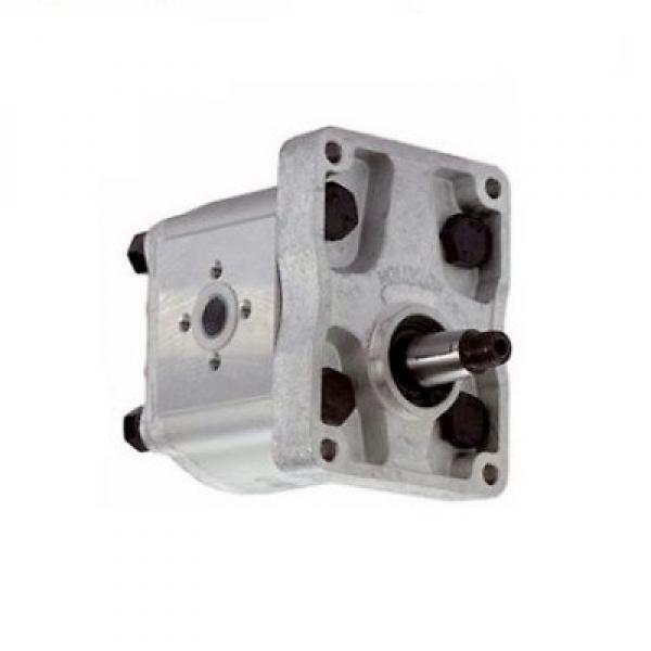 134A7-10301 Hydraulic Pump Gear Pump for TD27 FD20-30T7 ENGINE TCM T3 Forklift