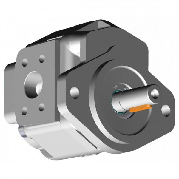 NUOVO Servosterzo idraulico pompa per MERCEDES-BENZ CLASSE E-SLK/DSP19002/