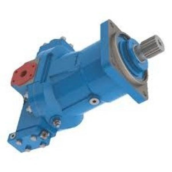 Cilindro idraulico PISTONE doppio effetto  440x50x25mm corsa 300