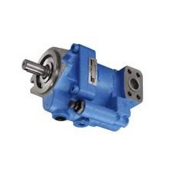 ✔️Pressa manuale idraulica con pistone mobile e manometro Fervi P001/20