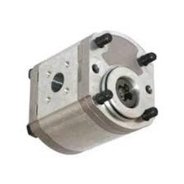 OLIO Casappa idrostatica pompa di prova EP-12-S 06004040 (5800 PSI)