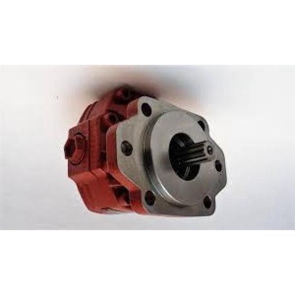 NUOVA pompa idraulica Casappa KP20.16-55W8-LBE/BC/20.16-LBE/799113VH
