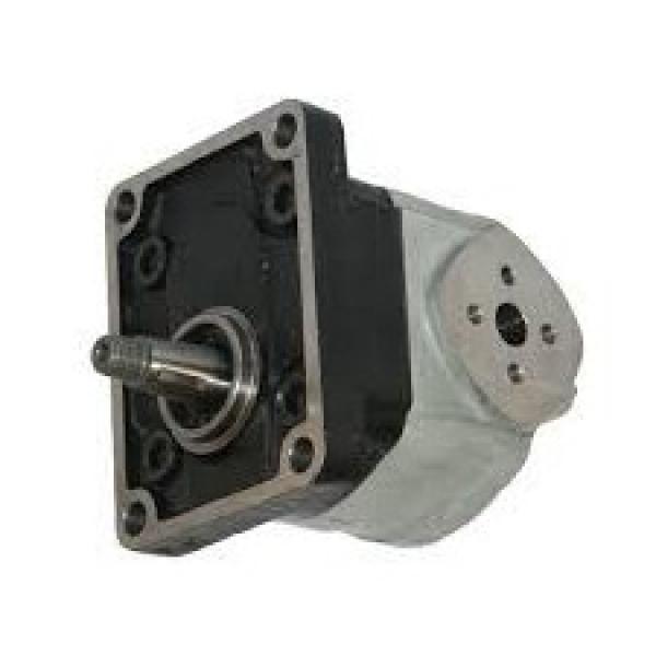 POMPA a palette idraulica Casappa, P/N PLP20.20D0-31-S1-L0