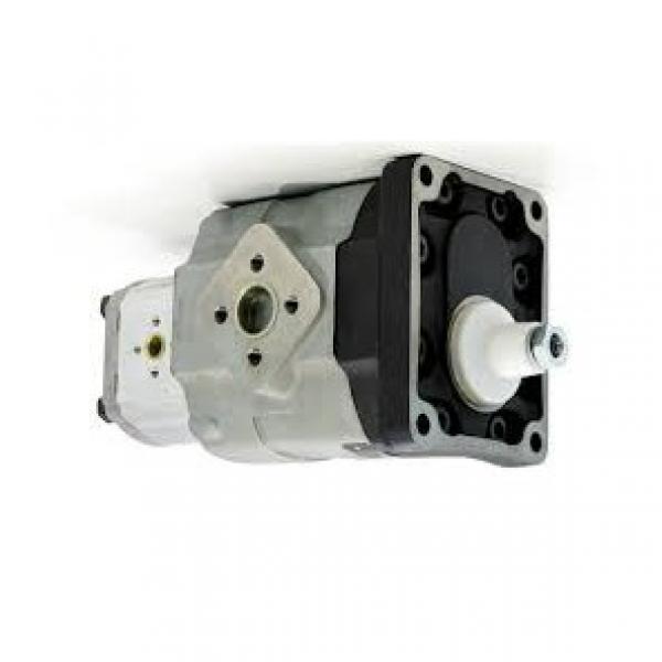RANSOMES Jacobsen Casappa Pump