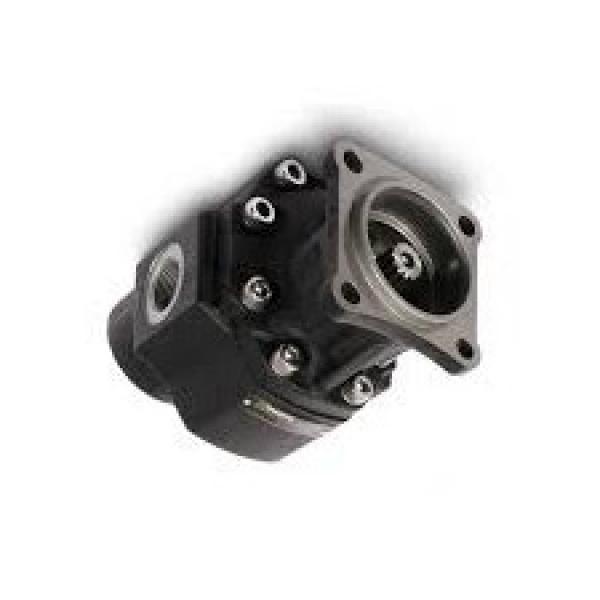 """Filtro aspirazione dei vari 200LPM 3"""" BSP 125 Micron Casappa elemento filtrante HHB42028"""