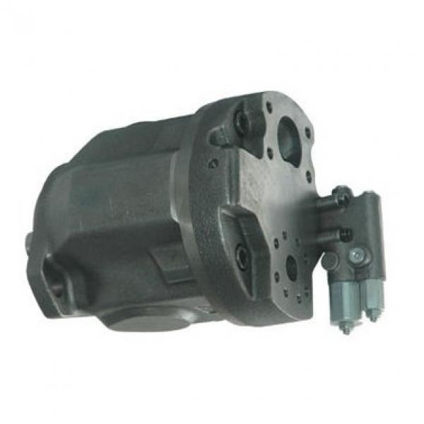 POMPA A STANTUFFO PVH074R01AA10A070000001001AC010A Eaton 02-160172 * NUOVO *