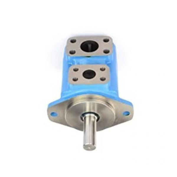 Massey Ferguson Pompa dell'olio idraulico kit di riparazione