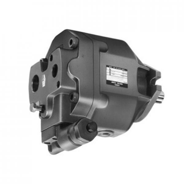 3/4 HP Convertibile superficiale o Profondo Bene pompa a getto con Interruttore a pressione, 115/230V UL