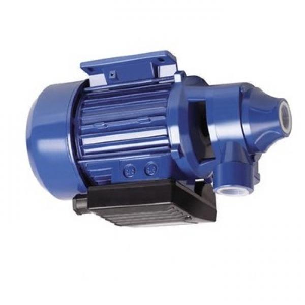 Permco P5151A224AAXXQ25-54(W) Idraulico Cambio Pompa 25-66.8 Gpm 900-2400 RPM